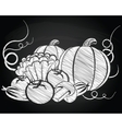 Harvest vegetables vector image vector image