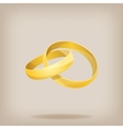 Pair of gold wedding rings vector image
