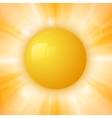 Abstract summer sun vector image