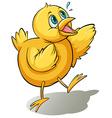 A yellow bird vector image