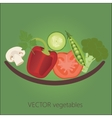 vegetables in plate isolate front vector image