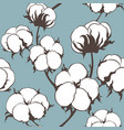 Seamless pattern with cotton plant vector image