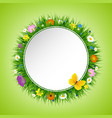 grass and flowers postcard vector image