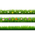 grass border with flower vector image