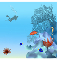 coral reef vector image