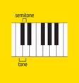 piano keyboard tone and semitone music theory vector image