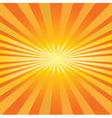 Radiating sun vector image vector image