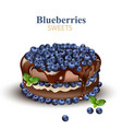 blueberries chocolate cake realistic vector image