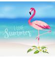 Realistic Sea Background Tropical Flamingo Bird vector image vector image