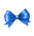 blue silky bow ribbon vector image