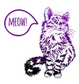 Cat sketch drawing on brown background vector image