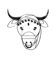 head indian sacred cow fertility and maternity vector image