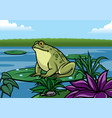 frog cartoon stand in the lotus leaf in the vector image