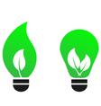 green bulb leaf vector concept vector image