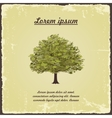 Old tree on vintage paper vector image