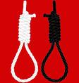 hangmans noose vector image