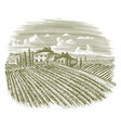 woodcut vintage italian vineyard vector image