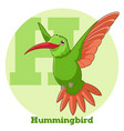 abc cartoon hummingbird vector image