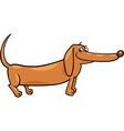 dachshund dog cartoon vector image vector image