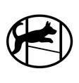 Jumping dog vector image