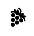 Grape Icon Flat vector image