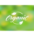 Organic brush lettering vector image