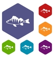 European perch Perca fluviatilis icons set vector image