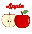Red apple - whole and cut fruit vector image