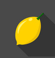 lemon cartoon flat icondark background vector image