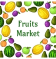 Fruits market decoration element with fruit icons vector image vector image