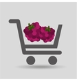 carry buying raspberry fruit icon graphic vector image