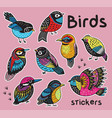 sticker set with hand drawn exotic birds vector image