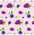 Blackberries and blueberries background vector image vector image