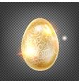 The Golden egg vector image