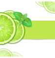 background of lime vector image
