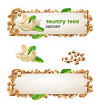 set banners with cashew and ground nuts vector image