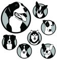 round dog emblems and stickers vector image vector image