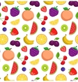 Fruits and berries background vector image vector image