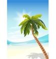 Palm tree on beach White Sand beach vector image