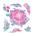 Romantic Floral Design Elements Set vector image