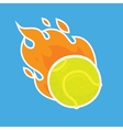 Tennis ball isolated team icon vector image
