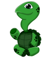 Cartoon turtle presenting vector image