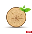 Wood Cross section of tree trunk with green leaves vector image