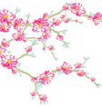 Blooming flowers on tree branch vector image