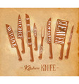kitchen meat cutting knifes poster craft vector image vector image