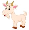 Goat cartoon character vector image