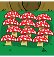 mushrooms in forest vector image
