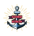 Color vintage pirate emblem vector image