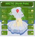 Arctic North Pole infographics statistical data vector image