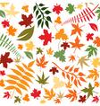 flower64 vector image
